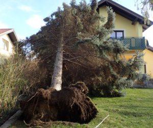 Technischer Einsatz: Sturmschaden