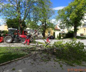 Mehrere Einsätze nach Sturmschäden