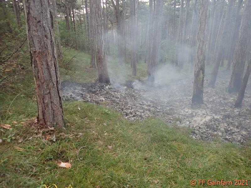 Waldbrand nahe der Vöslauerhütte